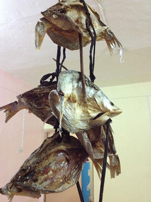 Torkad fisk, Masmota